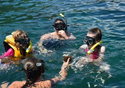 Snorkeling with marine life