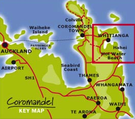Holiday in the Coromandel…it's good for your soul
