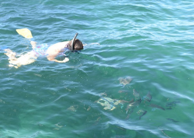 Snorkeling with the snapper